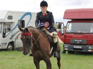 Retrained Racehorses